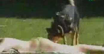 Butt Sniffing Dog Surprises Woman Sun Bathing