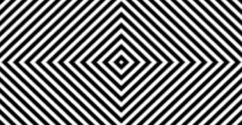 Optical Illusion Video Hallucination