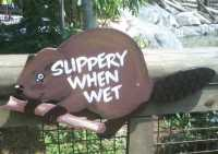 Interesting Bridge Sign That Features A Slippery Beaver