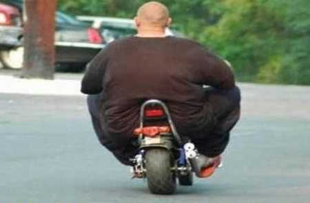 Fat Man On A Little Scooter
