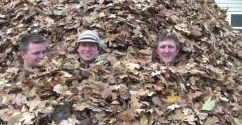 World's Biggest Pile Of Leaves